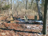 #S10.00 Conklin Cemetery Overview