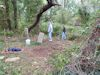 #BS17.02:  'Meadow Lane' - Ryder family cemetery during clean-up, September 2013